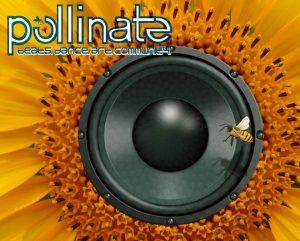 Pollinate Sunfower